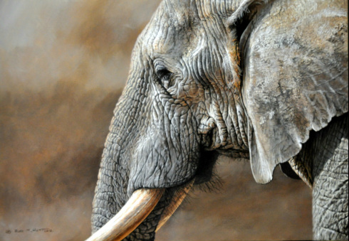 Original Paintings of Elephants