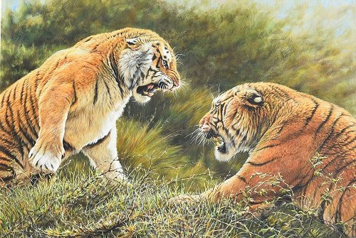 Lovers Tiff Paintings of big cats