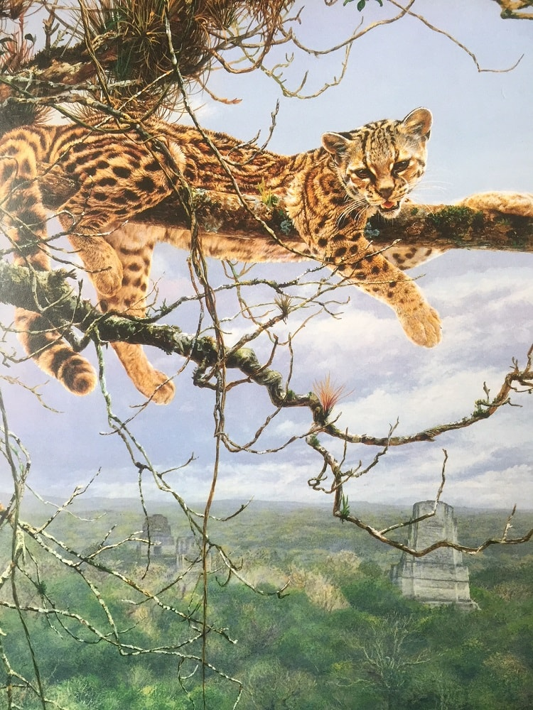 Margay Painting