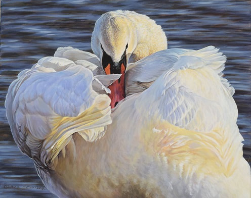 Swan Painting by Alanmhunt