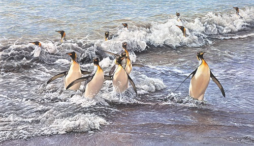 Original Paintings of Penguins