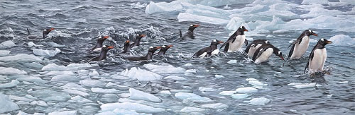 Paintings of Penguins