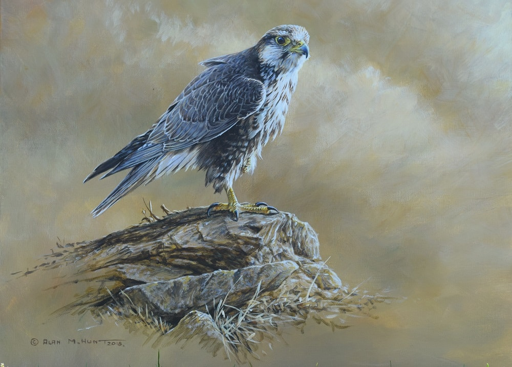 Donated Lugger Falcon Painting to Project Lugger