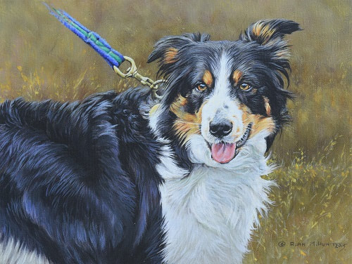 Dog Paintings by Alan M Hunt