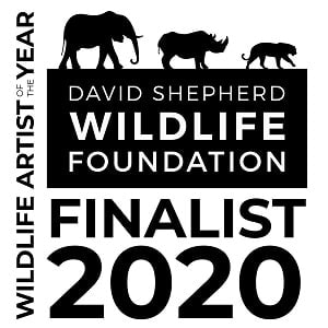 Wildlife Artist of The Year Finalist