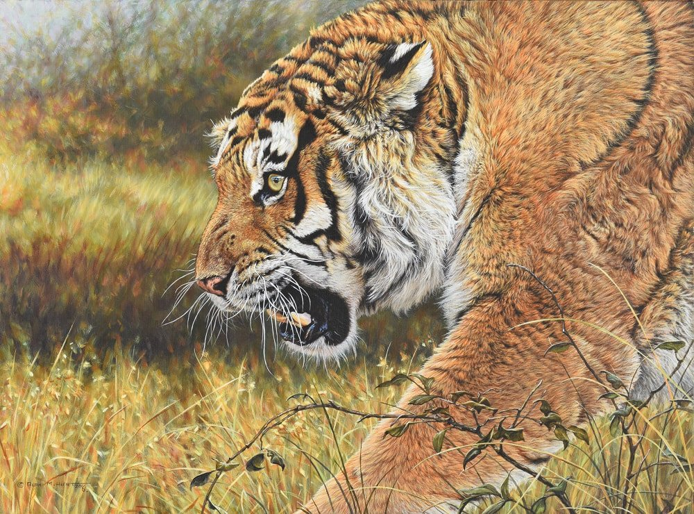 Original Tiger Painting for sale