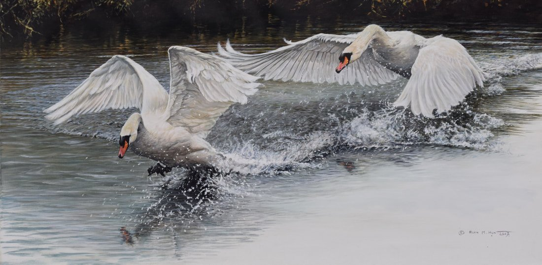 Original Painting of Swans