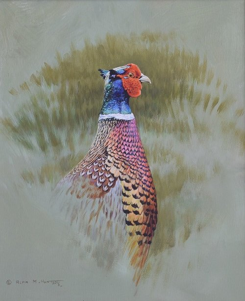 Pheasant Game Bird Painting