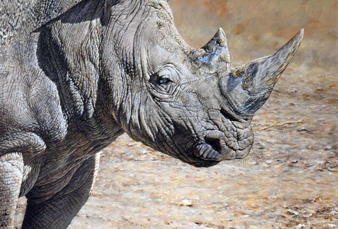 White Rhino Painting For Sale