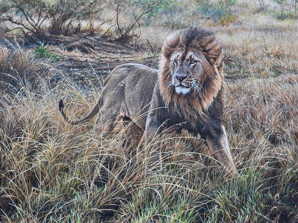 All He Survey Wildlife painting by Alan M Hunt