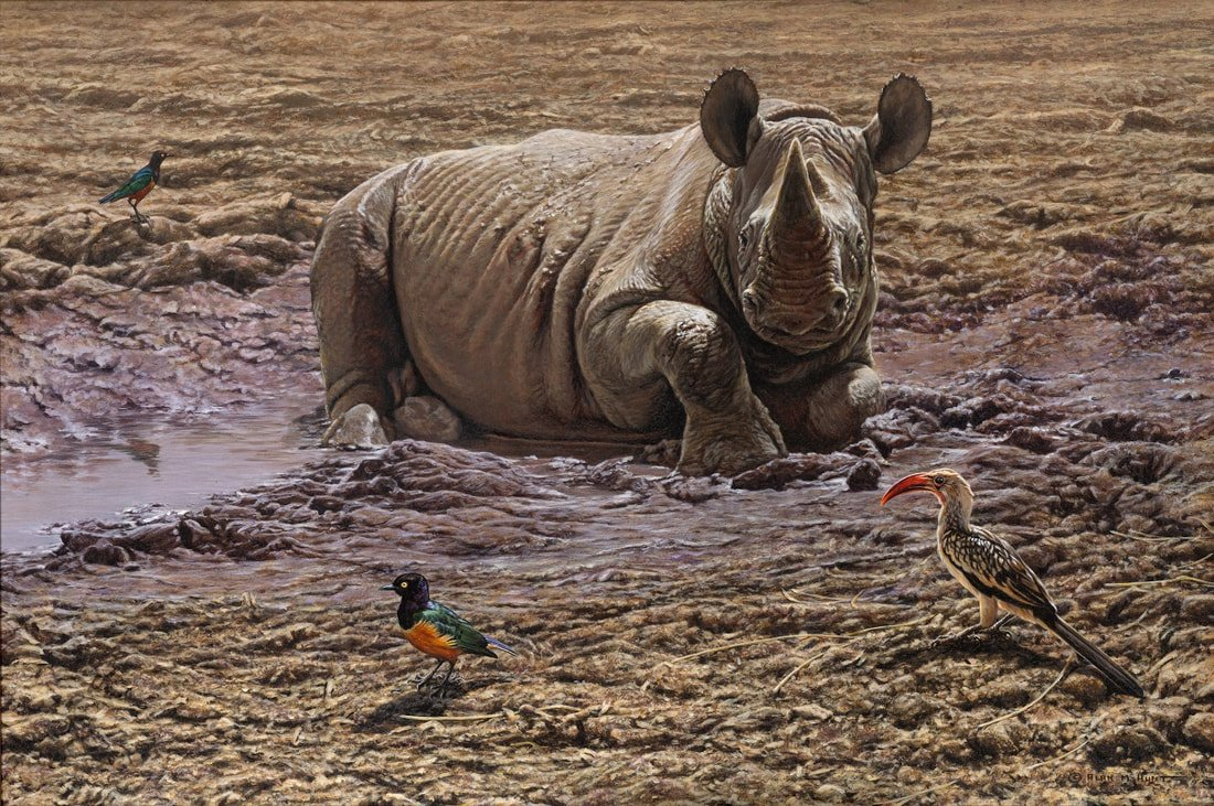 Rhinoceros Prints for sale